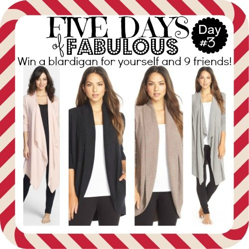 Sheaffer Told Me To Five Days of Fabulous Day 3: THE GIFT OF COZY
