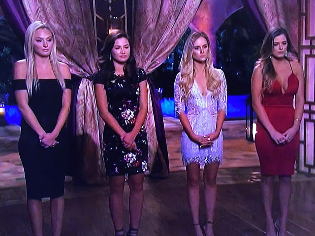 Sheaffer Told Me To The Bachelor Episode 8 Hometown Recap:  It Might Drive You To Drink