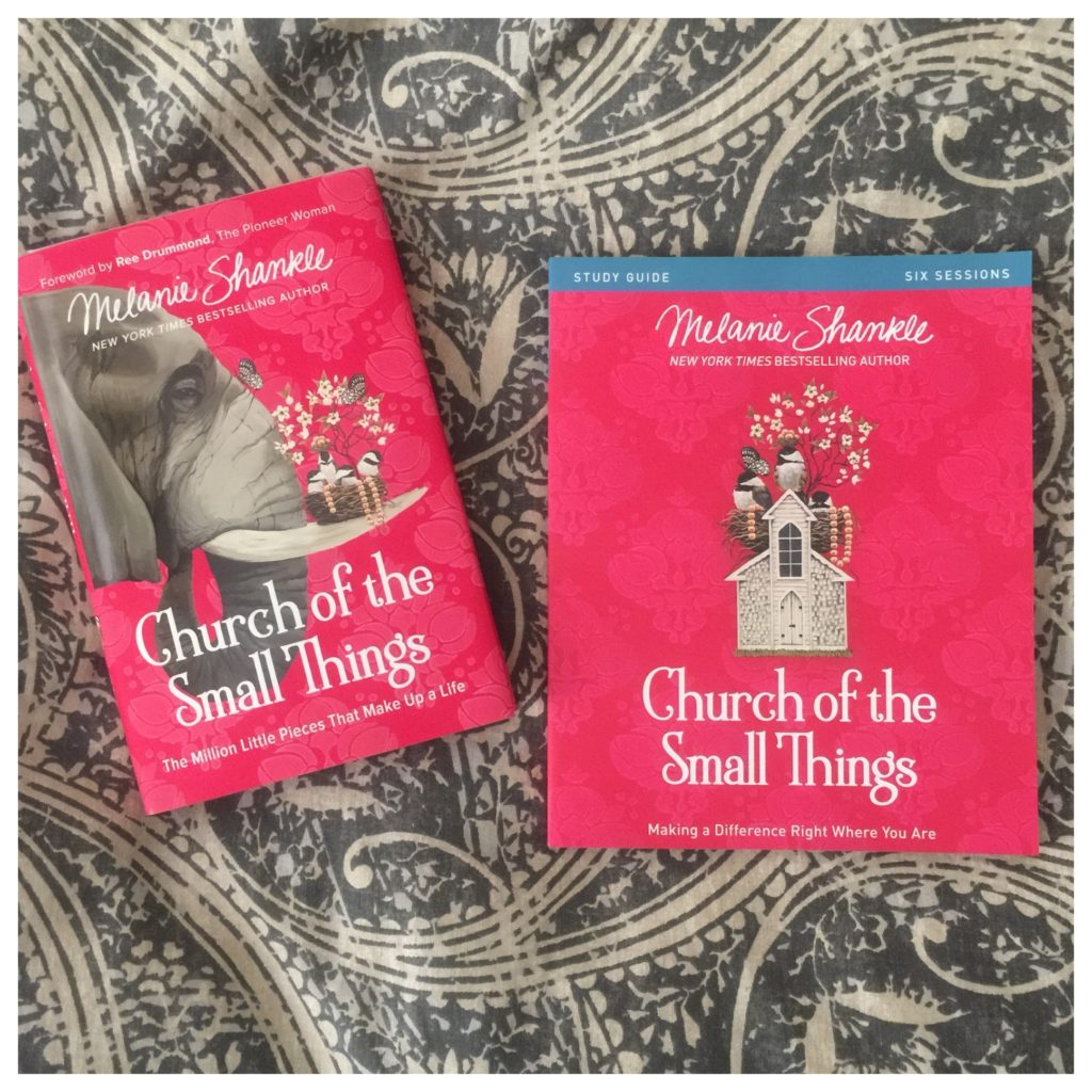 Image result for Church of the Small Things: Making a Difference Right Where You Are