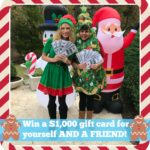 5 Days of Fabulous Day #5:  Two Friends Will Win $1,000 Each!!!  AND CHRISTMAS GIFT GUIDES!