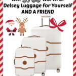 Five Days of Fabulous Day #3:  $700 Worth of Delsey Luggage for Yourself AND A FRIEND!